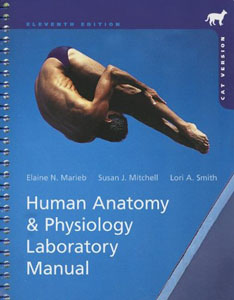 Buy: Test Bank for Human Anatomy & Physiology Laboratory Manual
