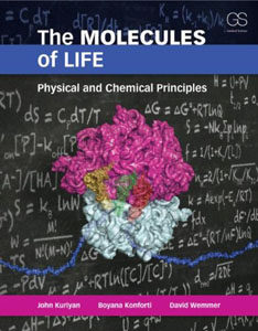 Test Bank for The Molecules of Life: Physical and Chemical Principles, 1st Edition, Boyana Konforti, ISBN-10: 0815341881, ISBN-13: 9780815341888