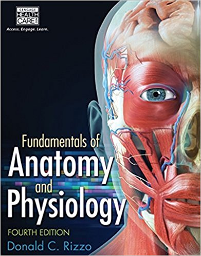 Buy: Test Bank for Fundamentals of Anatomy and Physiology 4e by Rizzo