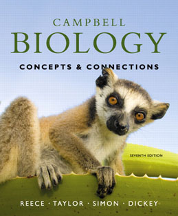 Buy: Test Bank for Campbell Biology Concepts and Connections