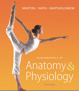 Buy: Test Bank for Fundamentals of Anatomy and Physiology