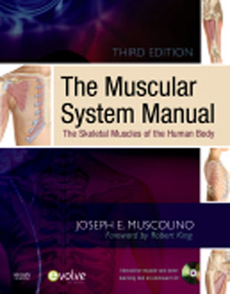 Test Bank for The Muscular System Manual The Skeletal Muscles of the Human Body, 3rd Edition, Muscolino, ISBN-10: 0323057233, ISBN-13: 9780323057233